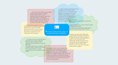 Mind Map: ESTRUCTURA FISIOLÓGICA Y FUNCIONES DEL CEREBRO.