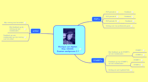 Mind Map: Monique van Alphen   Klas: OAO3C  Examen werkproces 3.1