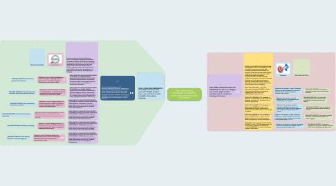 Mind Map: TWO TYPES OF ELL PROGRAMS: STANDARDS, OBJECTIVES AND TEACHING STRATEGIES