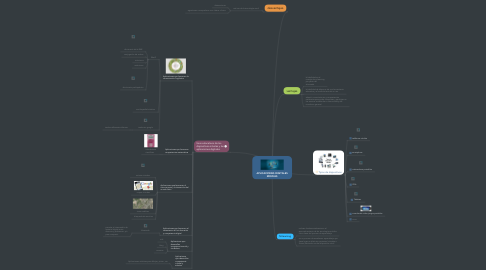 Mind Map: APLICACIONES DIGITALES MOVILES