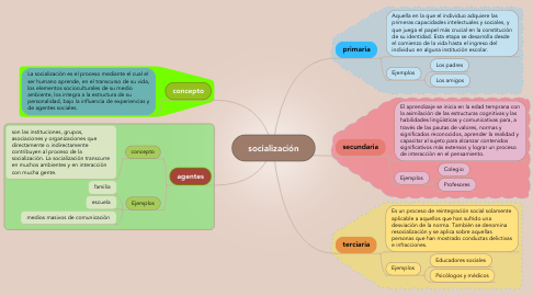 Mind Map: socialización