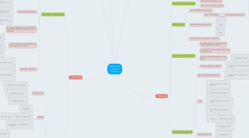 Mind Map: Història de la classificació arxivística