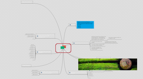 Mind Map: Planification annuelle
