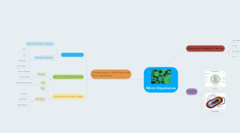 Mind Map: Micro-Organismes