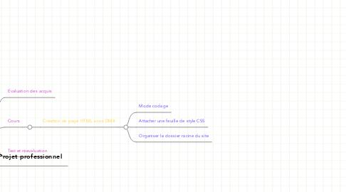 Mind Map: Parcours Webmaster