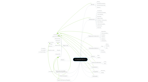 Mind Map: GLOBALMOTOR.CO