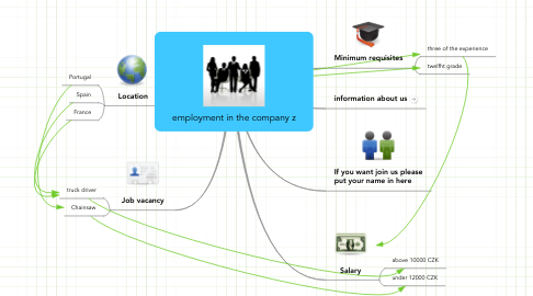 Mind Map: employment in the company z