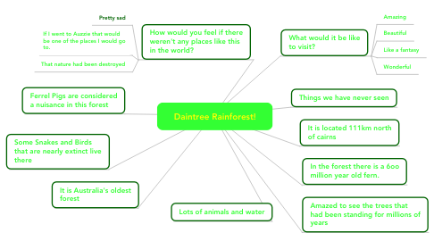 Mind Map: Daintree Rainforest!