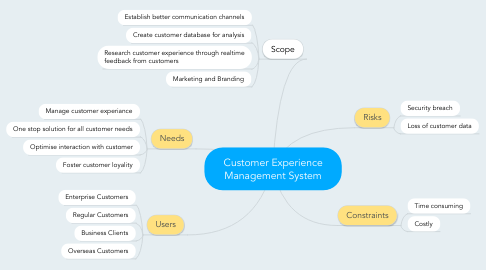Mind Map: Customer Experience Management System