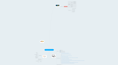 Mind Map: Boomgarden Medien Sp. z o.o.