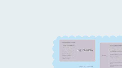 Mind Map: CICLO DE VIDA DE UN PROYECTO.