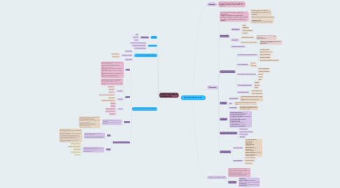 Mind Map: REGULADORES DE FLUJO