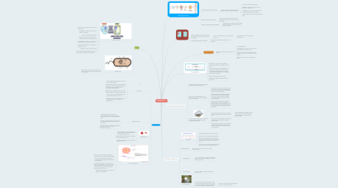 Mind Map: Biology Part 1