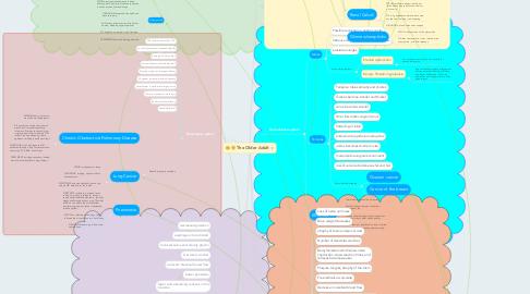 Mind Map: The Older Adult