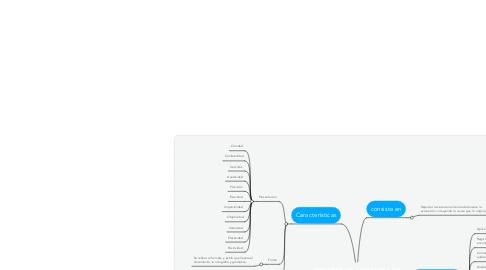 Mind Map: INFORME DE AUDITORIA DE SISTEMAS
