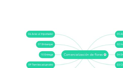 Mind Map: Comercialización de flores
