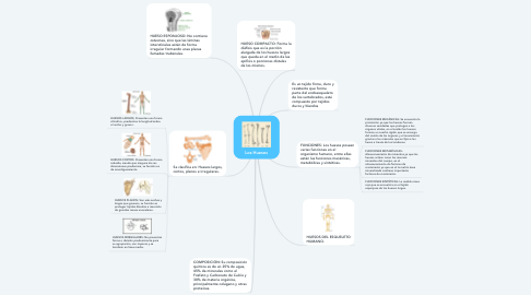 Mind Map: Los Huesos