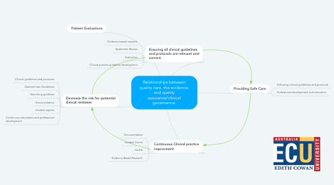 Mind Map: Relationships between quality care, the evidence, and quality assurance/clinical governance.