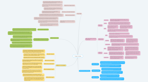 Mind Map: Project Context