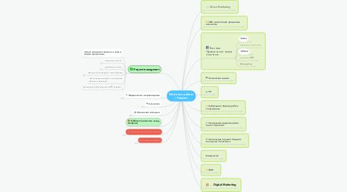Mind Map: Мой опыт работы / Навыки