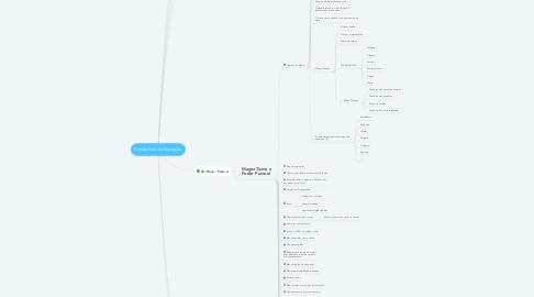 Mind Map: Versão final de Gravação