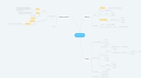 Mind Map: ESTANCORP