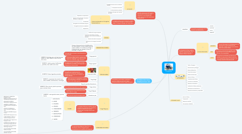Mind Map: LOGISTICA