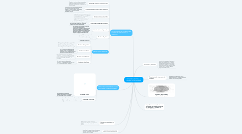Mind Map: ESTRATEGIAS PARA LA PRUEBA DE SOFTWARE