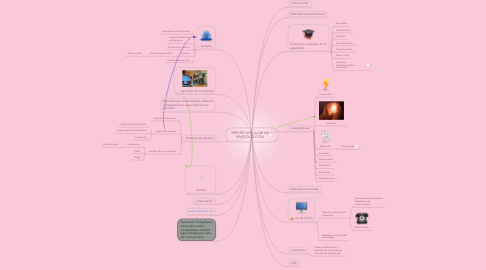Mind Map: IMPORTANCIA DE LA