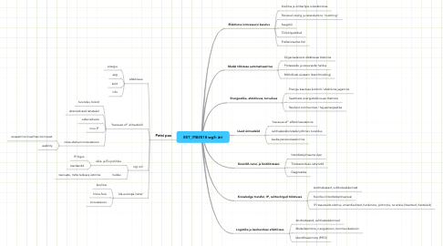 Mind Map: EST_IT@2018 wg5: äri