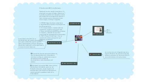 Mind Map: EL BIOS