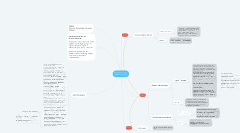 Mind Map: PERCURSO DE LA  INVESTIGACIÓN
