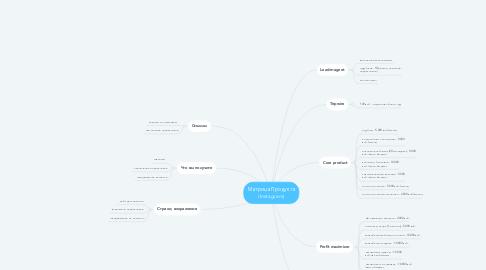Mind Map: Матрица Продукта (Instagram)