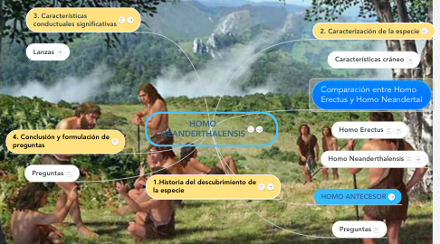 Mind Map: HOMO NEANDERTHALENSIS