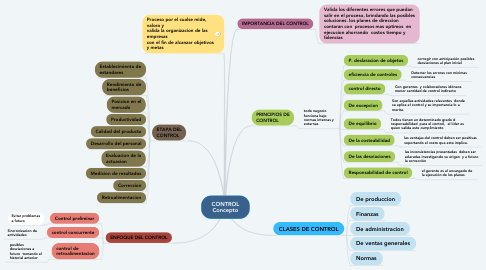 Mind Map: CONTROL Concepto