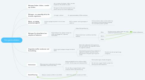 Mind Map: Nitrogenkredsløbet