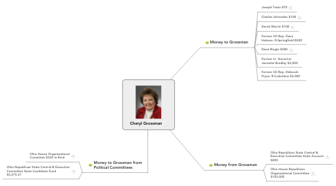 Mind Map: Cheryl Grossman