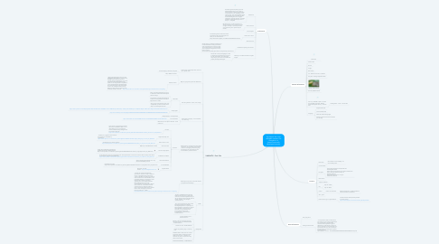 Mind Map: Synthesise the most desirable vacation for Geogalot in a less economically developed country.