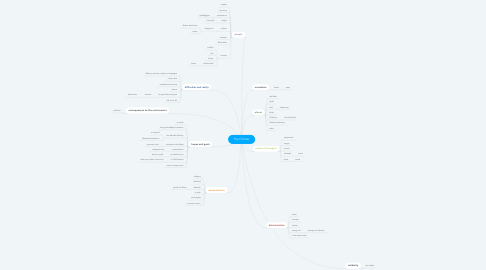 Mind Map: The Frontier