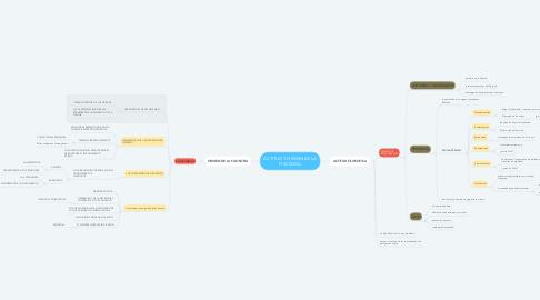 Mind Map: ACTITUD Y ORIGEN DE LA FILOSOFIA