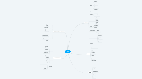 Mind Map: Шкаф