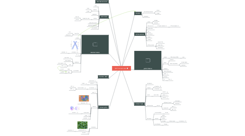 Mind Map: התא לבגרות 2017
