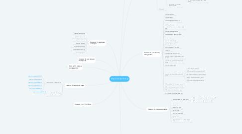 Mind Map: Мадагаскар Питер