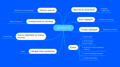 Mind Map: JEGESMEDVE