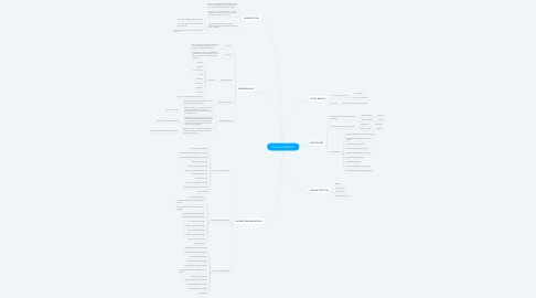 Mind Map: THE CHAOS REPORT