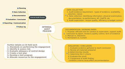 Mind Map: INTERNAL  AUDIT PROCESS