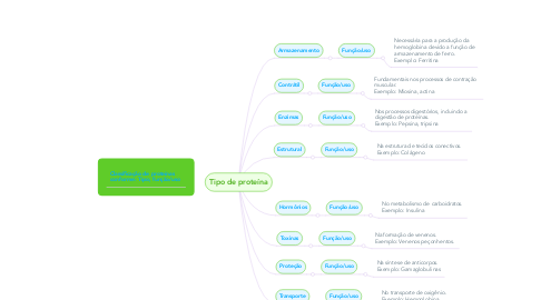 Mind Map: Tipo de proteína