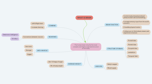 Mind Map: The human brain is by far the most complex and highly organized structure of the body