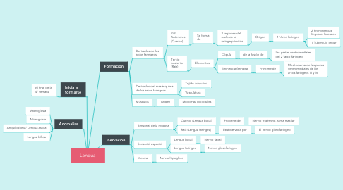 Mind Map: Lengua