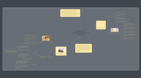 Mind Map: PROCESOS DE COMUNICACIÓN ORAL Y ESCRITA